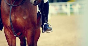 Horse Riding Accident Lawyers